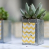 Seating plan and favour-in-one | Pot plant table numbers