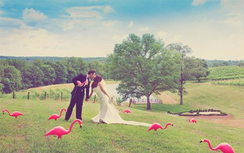 wedding-venues1