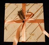 Elant invitations cards johannesburg wedding stationery and elante large5 stopboris Images