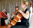 professional classical musicians