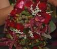 real-wedding-holly-ronald-large3