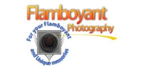 Flamboyant Photography